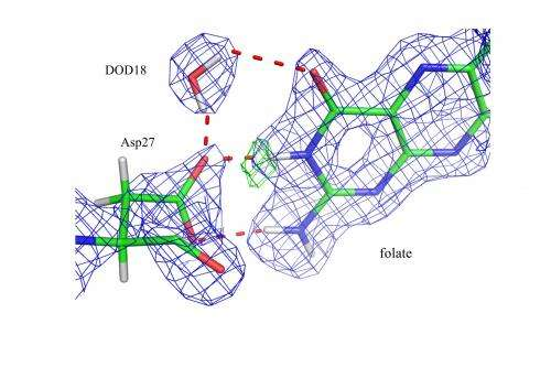 """""""Seeing"""" hydrogen atoms to unveil enzyme catalysis"""