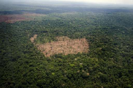 Seen from above, the Amazon resembles a huge billiards table—a field of intense green pockmarked by brown stains