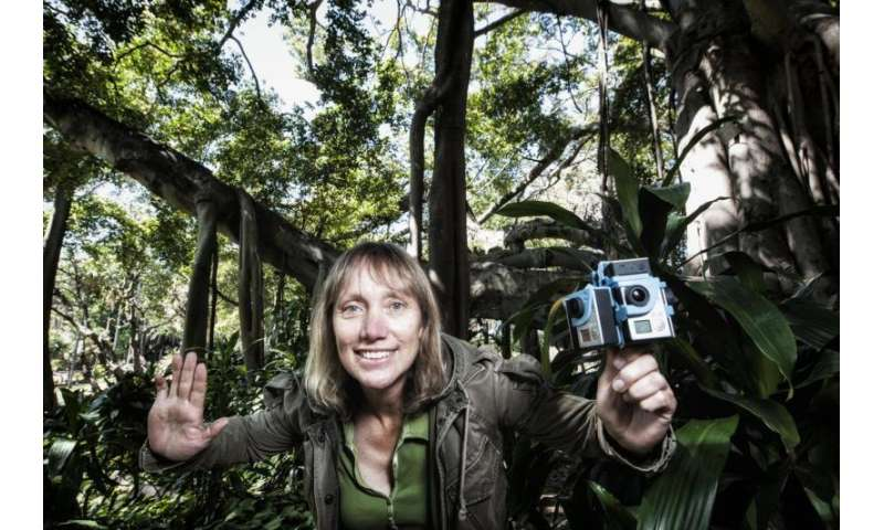 Sight set on tracking threatened species: QUT research