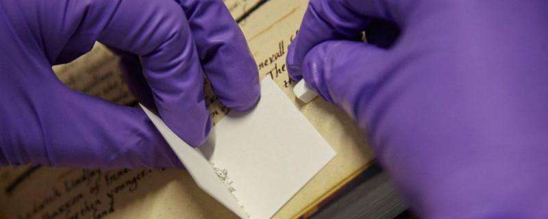 Skin deep—researchers solve mystery of parchment origins