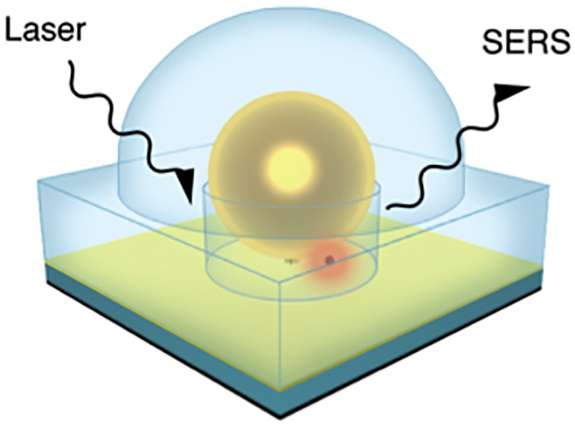 Smart sensor detects single molecule in chemical compounds