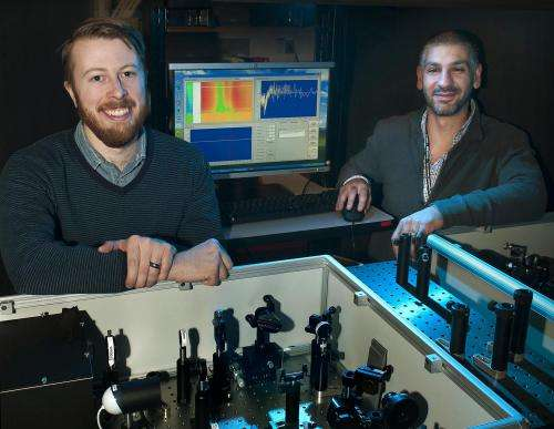 Solar cell polymers with multiplied electrical output
