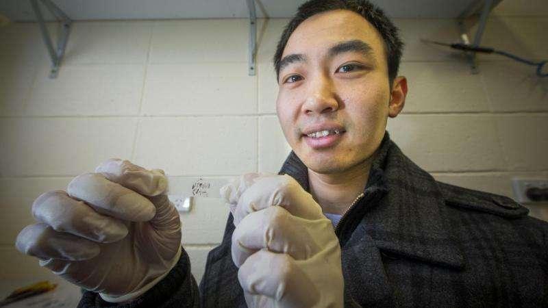 Sticky tape & phosphorus the key to ultrathin solar cells: ANU media release