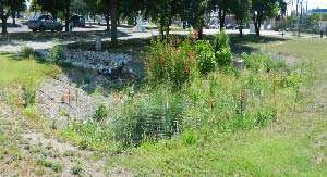 Stormwater practices at Texas A&M AgriLife Dallas center show statewide, broader promise