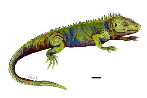 Student researcher identifies Gloucestershire fossil as new species of ancient reptile
