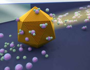 Studies of individual nanoparticles can be the key to future catalysis