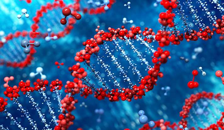Study probes genes for clues to drug resistance in aggressive breast cancer