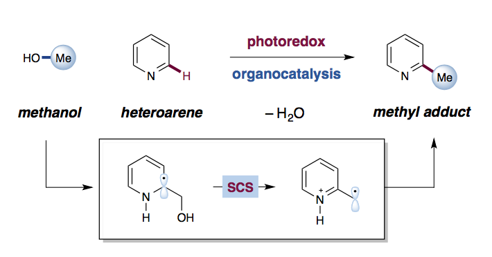 Taking a cue from nature: Turning alcohols into alkylating agents