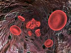 Testing new therapies to effectively combat anaemia
