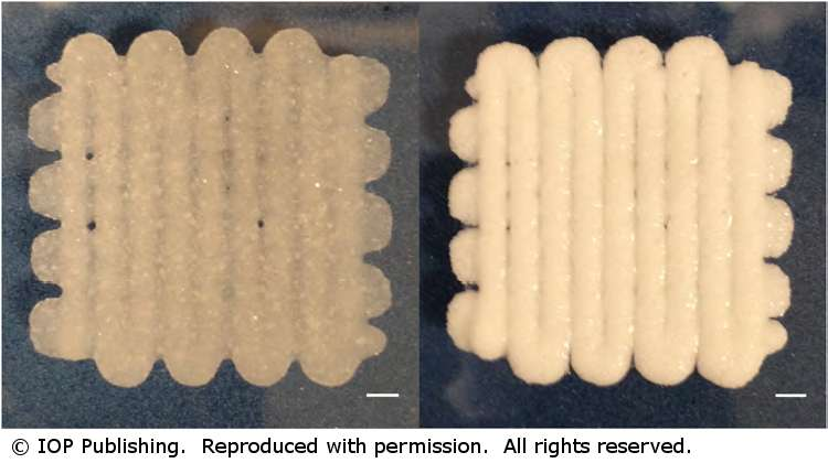 The bioprinted 'play dough' capable of cell and protein transfer