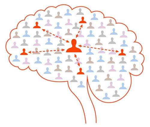 The brain's social network: Nerve cells interact like friends on Facebook