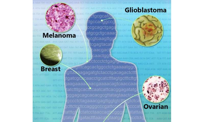 The coming third wave of precision cancer medicines