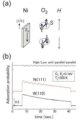 The effect of molecular oxygen electron spin on the surface oxidation reaction