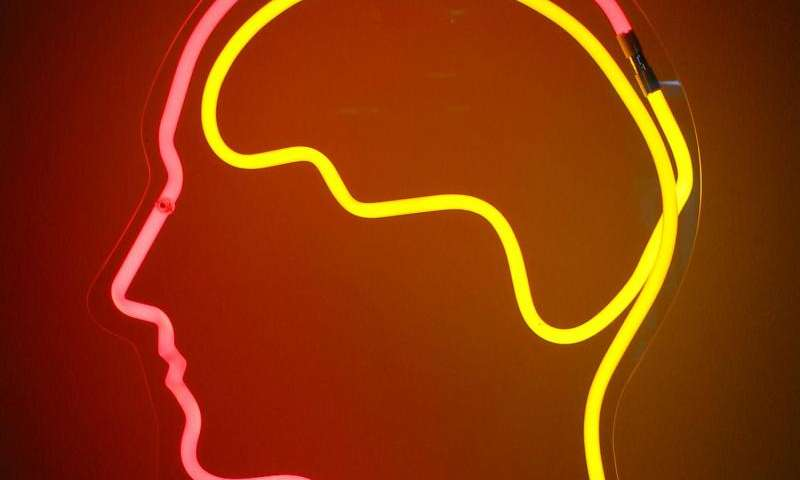 Therapy affects the brain of people with Tourette syndrome