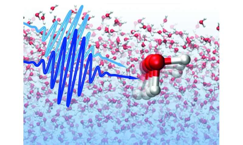 The structural memory of water persists on a picosecond timescale