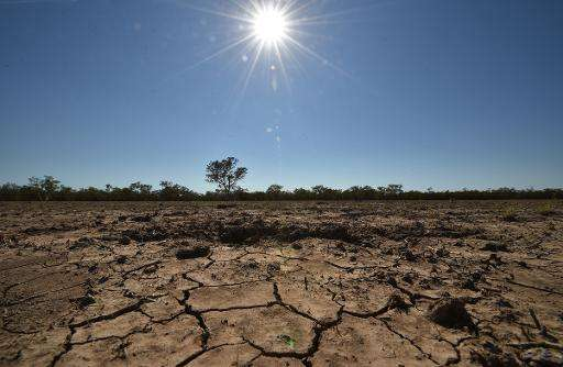 The sun scorches the already cracked earth on a farm in Walgett, 650 kilometres (400 miles) northwest of Sydney, on February 11,