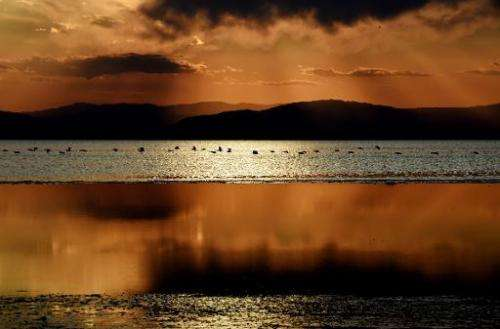 The sun sets as water birds fly near Red Hill Marina at the Salton Sea, California on March 19, 2015