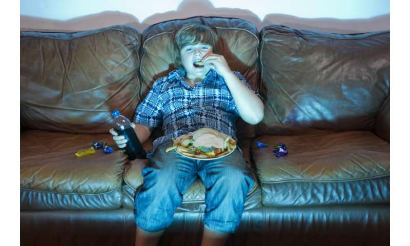 Tight family budget may lessen impact of food commercials on children