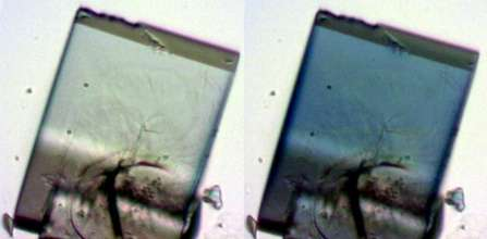 Tiny, light-activated crystal sponges fail over time. Why?