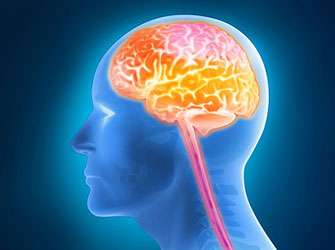 Tumour network in the brain increases treatment resistance