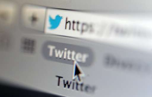 Twitter's share of US Internet users remained stuck at 23 percent, the same level as last year, although it rose from 16 percent