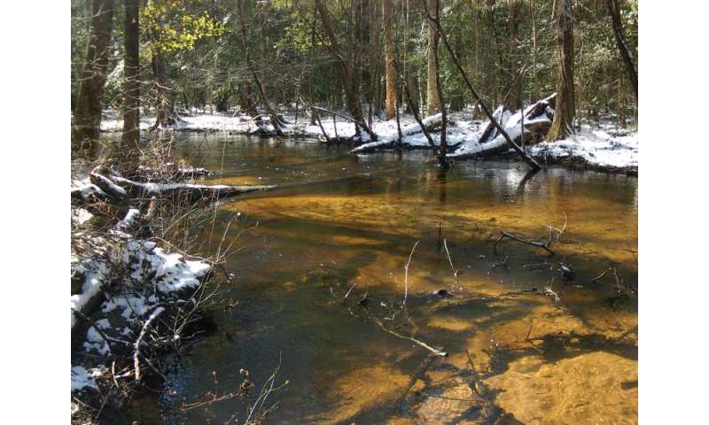 UGA ecologist finds another cause of antibiotic resistance