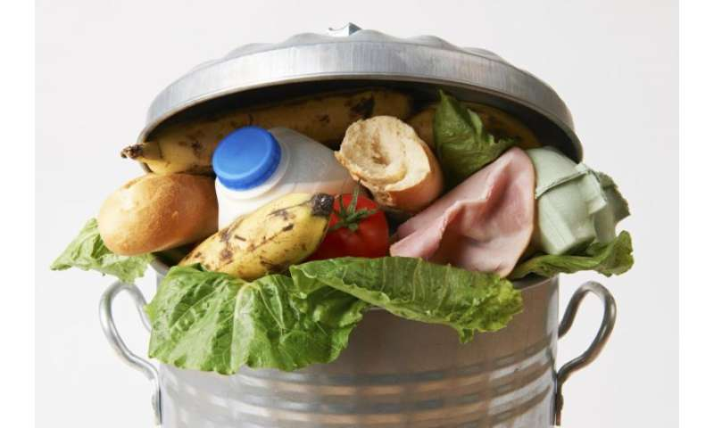 UK bottom of European avoidable food waste league