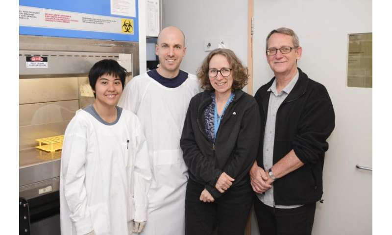 UQ scientists close in on first dengue treatment