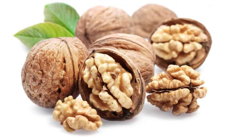 USDA takes a fresh look at the calorie content of walnuts