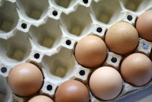 US farmers have been forced to kill almost 40 million chickens and other birds, causing egg prices to soar as a deadly version o