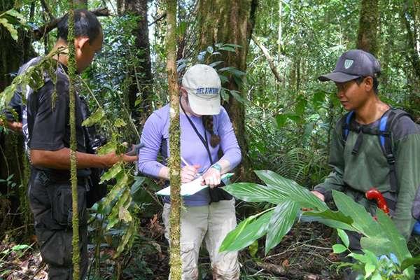 Using leeches to measure mammal biodiversity