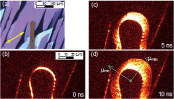 Visualizing anisotropic carrier transport in organic semiconductor materials