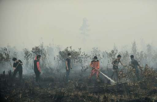 Volunteers attempt to extinguish a peatland fire on the outskirts of Palangkaraya, a city of 240,000 in Indonesia's central Kali