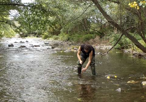 Water-treatment plants are not supposed to harm the functioning of river ecosystems