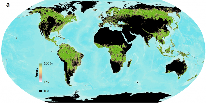 What is a forest? NASA/USGS mission helps answer the question