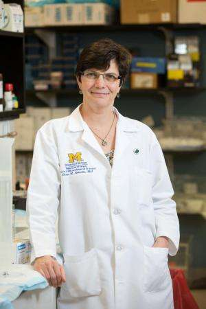 What makes pancreatic cancer so aggressive? New study sheds light
