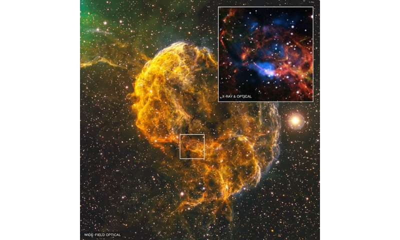 What spawned the Jellyfish Nebula?