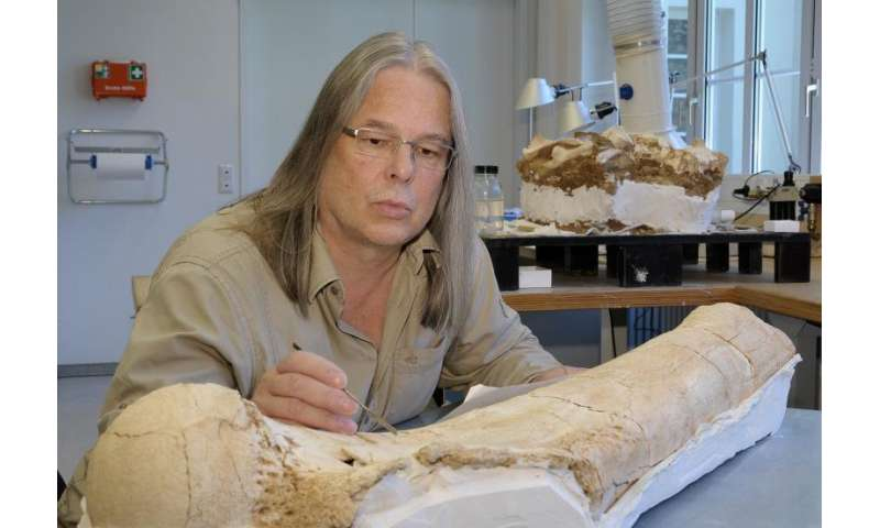 Widest distribution of mammoths during the last Ice Age