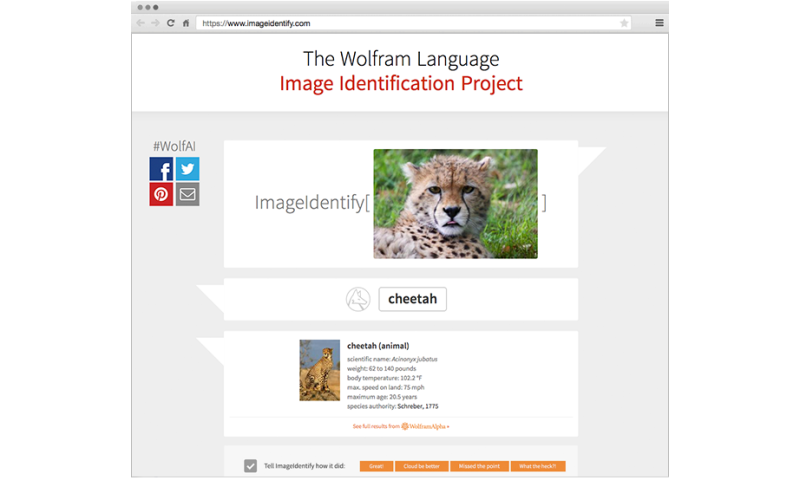 Wolfram's ID project launch touts ImageIdentify function
