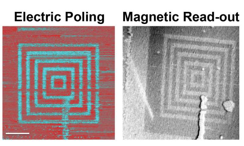 A conscious coupling of magnetic and electric materials