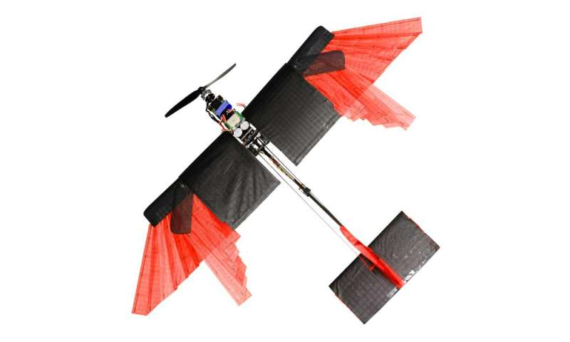 A drone that flies (almost) like a bird
