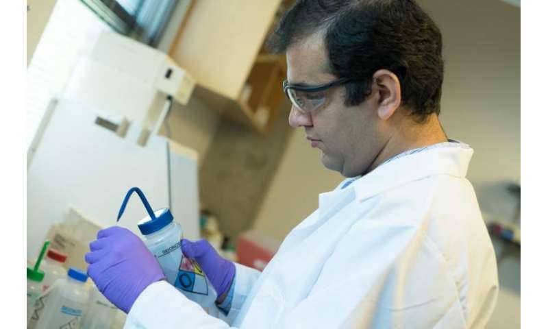 Amyloid probes gain powers in search for Alzheimer's cause