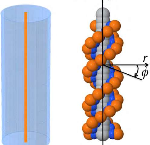 A new model for simulating DNA's 'atmosphere' of ions