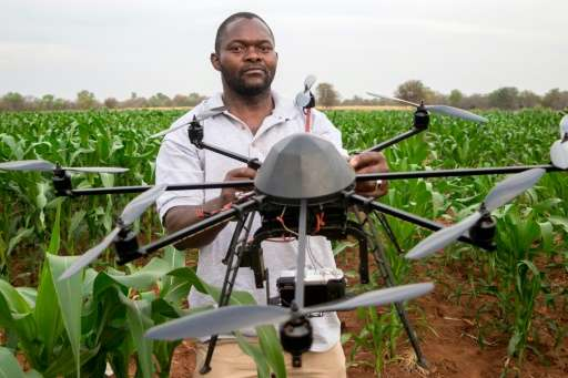 A technician holds a drone used to scout a plot of a heat-tolerant hybrid maize growing at the Chiredzi Research Station, on Oct