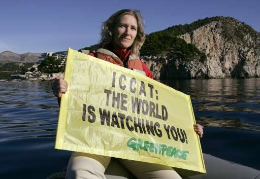 Atlantic bluefin tuna stocks were decimated to a low of 150,000 tonnes in the mid-2000s, leading to protests and calls from acti