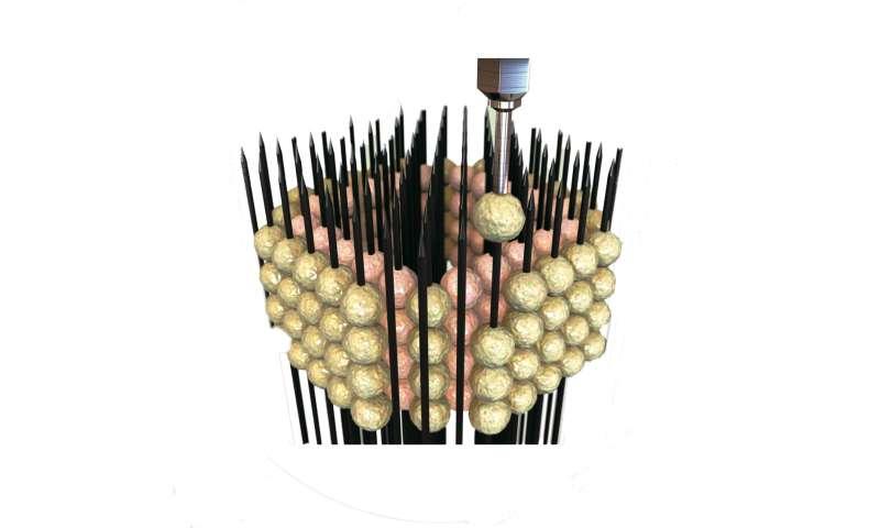 A traditional Japanese art inspires a futuristic innovation: Brain 'organoids'