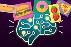 Brain cells that provide structural support also influence feeding behavior, study shows