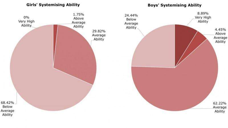 Can our brain type explain the gender gap in STEM subjects and careers?