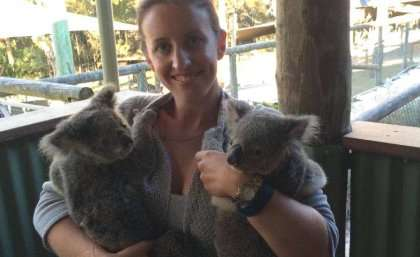 Chilling findings are good news for koalas