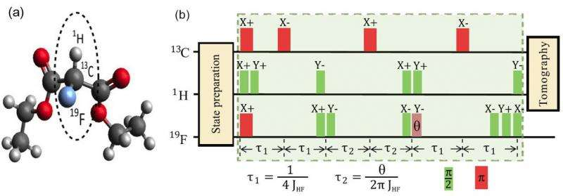 Chinese scientists realize quantum simulation of the Unruh effect